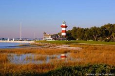 Harbour Town Golf Links at Sea Pines, beautiful great test, lots of alligators