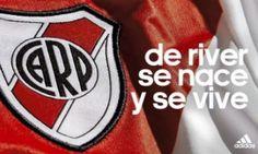 Galeria Soccer World, Carp, Root Beer, Juventus Logo, Football, Plates, Grande, Ariel, Joker