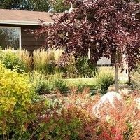 Landscape Design for Bungalows - gallery of landscaping design ideas for bungalows Landscaping Design, Bungalows, Country Roads, Yard, Design Ideas, Landscape, Gallery, Plants, Patio