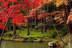 Image result for kokedera temple
