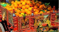 Sicilian Oranges in the Conca d'Oro