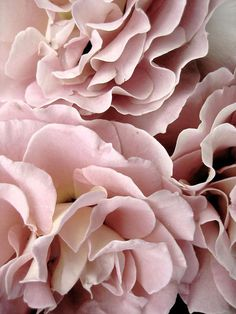 Beautiful flowers - light pink. 60% off on our selection of designer dresses here: www.dressscoop.com