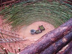 "On a rainy February day, A Natural State documented the work of Nils-Udo, a visiting artist at Clemson University. Nils' construction was the newest addition to the university's nature-based sculpture park. Nature-based sculptures use only natural materials, all of which Nils collected from the foothills area of South Carolina. Pine trees, bamboo, red clay, dirt, and grass were used in the sculpture -- a ""nest"" resting on the slope of a grassy hill."