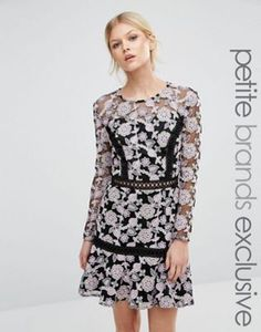 True Decadence Petite Allover Floral Lace Skater Dress