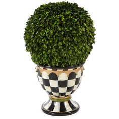 MacKenzie-Childs Architect's Topiary Urn ($495) ❤ liked on Polyvore featuring home, home decor, green pot and green home decor