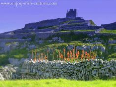 Aran Islands, County Galway, Ireland-O'Brien's Castle on Inis Oirr. Click on the photo to see the full post and many other beautiful Ireland travel photos on our Facebook page.