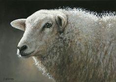 Sold | Sheep Mieke I, oil/canvas 10 x 14 inch (25 x 35 cm) © 2012 Klimas