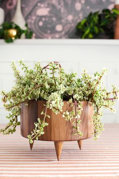 Wooden planter DIY