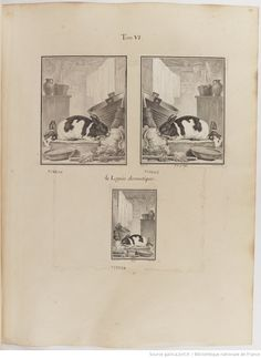 Lapin domestique, Figures pour l'histoire des quadrupèdes, par M. de Buffon.. Tome II / Déssins [sic] originaux par DeSeve et Buvée, avec les Gravures des Editions in12 et in4° vol. 5 à 7.   1755-1758