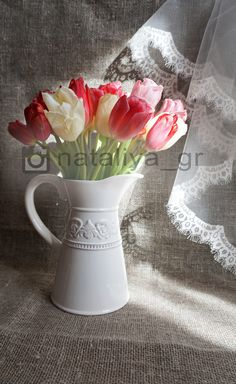 Red tulips||Light and shadows||Spring flowers||instagram photography ideas inspiration