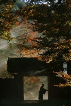 Sanzen-in Temple near Kyoto. Taken for a series on Japan for 'Life', circa 1963, Brake, Brian (1927–1988 ) 大豆生田