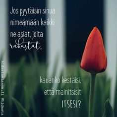 Jos pyytäisin sinua nimeämään kaikki ne asiat, joita rakastat, kauanko kestäisi, että mainitsisit itsesi? Carpe Diem Quotes, When Life Gets Hard, Sayings And Phrases, Joko, Some Words, Funny Texts, Happy Life, Life Lessons, Best Quotes