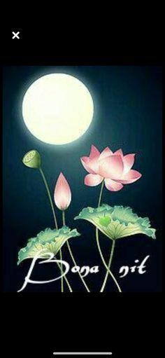 Frases Bono, Good Night, Good Morning, Sweet Dreams, Dandelion, Romance, Flowers, Plants, Oil Paintings