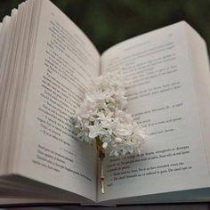 Iubire pură ... 📖 Credit foto: @thelonelybookshelf 📸  #bookstagram #book #booklover #books #bookphotography #bookaddict #bookstagrammer #bookaholic #bookcommunity #bookclub #read #reading #readmorebooks Book Photography, Bookstagram, Book Lovers, Reading, Instagram, Reading Books, Book Worms