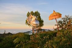 A view from the top of Mount Bakataru Volcano in Bali with Sweeping Views over the island. An amazing adventure from Sarinbuana Eco Lodge