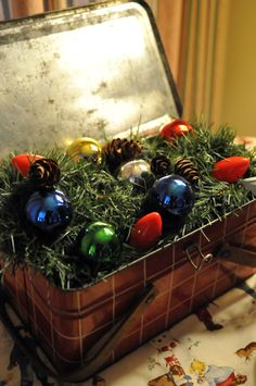 I should do something like this with my childhood ornaments since I am too afraid hang them on the tree.