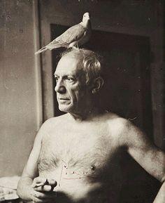 Picasso bird portrait