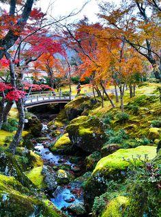 Autumn garden, Hakone Museum, Kanagawa, Japan