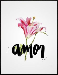 quadro amor Instagram Feed, Planners, Decoration, Words, Drawings, Illustration, Floral, Flowers, Prints