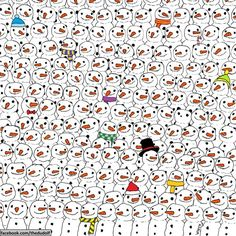 Thousands Of People Can't Find The Hidden Panda Bear! Can YOU Solve This Viral Puzzle?