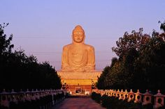 Buddha Statue, India.Great Buddha Statue.