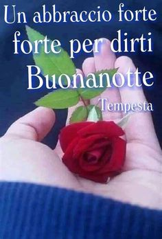 Italian Quotes, Good Night, Genere, Video, Lol, Google, You Are Special, Messages, Pictures