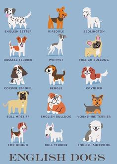 Breed Types