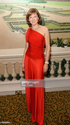 Fiona Bruce attends Gary Barlow Hosts BBC Children In Need Gala at The Grosvenor House Hotel on November 2013 in London, England. Get premium, high resolution news photos at Getty Images Fiona Bruce, Bbc Presenters, Gary Barlow, Celebs, Female Celebrities, Children In Need, New Woman, Absolutely Stunning, Pin Up