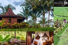 Villa Neyang, Hotel in Bali Bali, Villa, Outdoor Furniture, Outdoor Decor, Modern, Home Decor, Indonesia, City, Places