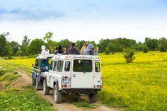 Niet alleen in Afrika kun je op Safari. Ook natuurgebied de Camargue kun je met een 4x4 verkennen!  Lees het blog voor info over de jeepsafari en andere leuke uitstapjes: http://blog.sunweb.nl/2015/06/10/de-leukste-plekken-in-languedoc-roussillon/
