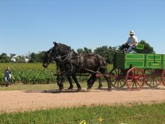 Founded in the late 1800s, Yoder is considered to be the largest Amish settlement in Kansas with a population of nearly 400.
