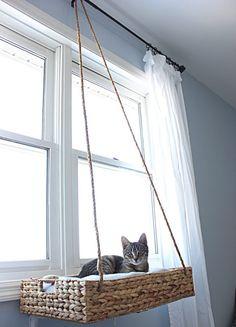 Lit Chat Diy, Cat Window Perch, Window Sill, Cat Window Hammock, Diy Cat Hammock, Diy Cat Bed, Cat Basket, Cat Room, Cat Decor