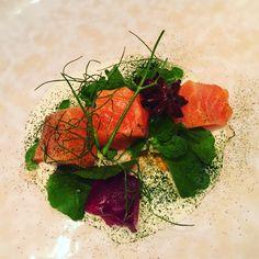 Salmon in campari Seaweed Salad, Carrots, Vegetables, Ethnic Recipes, Food, Salad, Veggie Food, Vegetable Recipes, Meals