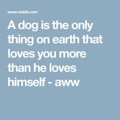 A dog is the only thing on earth that loves you more than he loves himself - aww