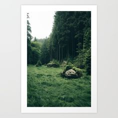 Art Print-From a weekend of strifing through a green wonderland.