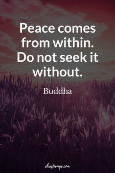Are you at a point in your life where feeling whole and complete seems more important than fitting in or being who other people think you should be?Here is a great reminder quote by the Buddha to practice self love and self acceptance. Peace comes from within; do not seek it without. #selflove #selfacceptance #personalgrowth #intentionaliving #selfcompassion #selfcare #loveyourselffirst #happiness #bodymindspirit #selfhelp #selfcompassion #quotes #quoteoftheday #quotestoliveby  #buddha Buddha Quotes Inspirational, Inspiring Quotes, Motivational Quotes, Self Love Quotes, Quotes To Live By, Me Quotes, Reminder Quotes, Brene Brown, Self Compassion