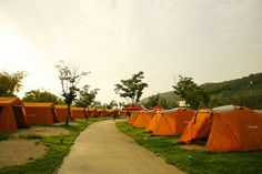 Nanji Camp Grounds - Located in Mapo-gu Sangam-dong, Nanji Campground is the largest of the five campgrounds in Seoul, able to accommodate up to 2,000 people with a total of 165 camping sites.