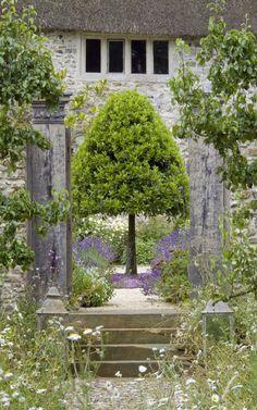 Garden design: a 17th century farmhouse in Devon Lavender Patio