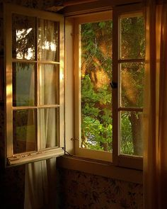 Love open windows, it would be wonderful to live somewhere that my window could be open all year!
