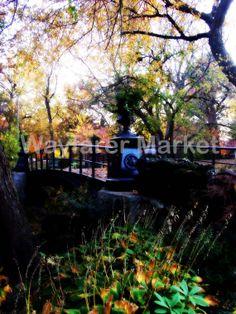 Scenic Bridge by Mandy Solomon 12x16 Print by WayfarerMarket, $40.00