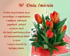 Birthday Wishes, Happy Birthday, Bday Cards, Aga, Pineapple, Fruit, Food, Saint Name Day, Happy Brithday