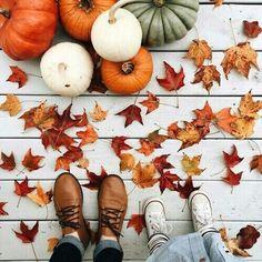 autumn and pumpkins #photography