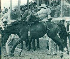 Chris LeDoux ademas de excelente cantante de country, mantuvo una exitosa carrera como cowboy, compitiendo profesionalmente en el circuito de Rodeo, en 1976 fue campeon mundial