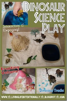 Dinosaur Science Play - Sensory Fun toddler, preschool, elementary. Lots of other lesson plans in there for science experiments about bugs, plants, inchworms, etc