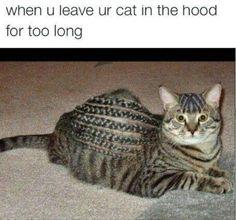 Hood Meme #Leave, #Long