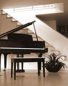 Piano. Such a beautiful sound! I wish I could play I hope one day I can have a beautiful grand piano in my house!