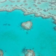 One smile can start a friendship. One word can end a fight. One look can save a relationship. One individual can change your life.  #flight#reef#greatbarrierreef#whitesundays#heart#love#inlove#unreal#beautiful#from#the#top#of#the#air#dream#traveling#heartreef#australia by fireflies.23 http://ift.tt/1UokkV2