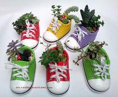 aranjamente pentru casa si birou in adidasi ceramici cu plante suculente
