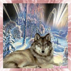 Wolf gif   Peace And Love