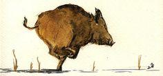 Running Wild Boar Print By Juan  Bosco